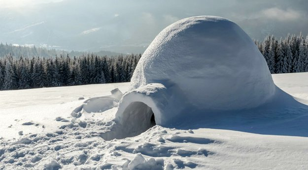 Igloo | 14 Survival Shelters You Can Build For Any Situation
