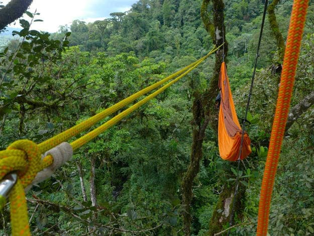 A Tree Top Hammock In The Rainforest   14 Survival Shelters You Can Build For Any Situation