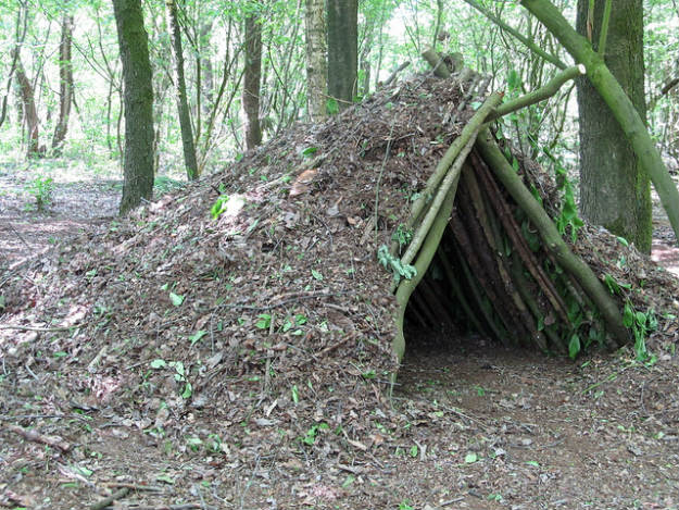 A Debris Shelter   14 Survival Shelters You Can Build For Any Situation