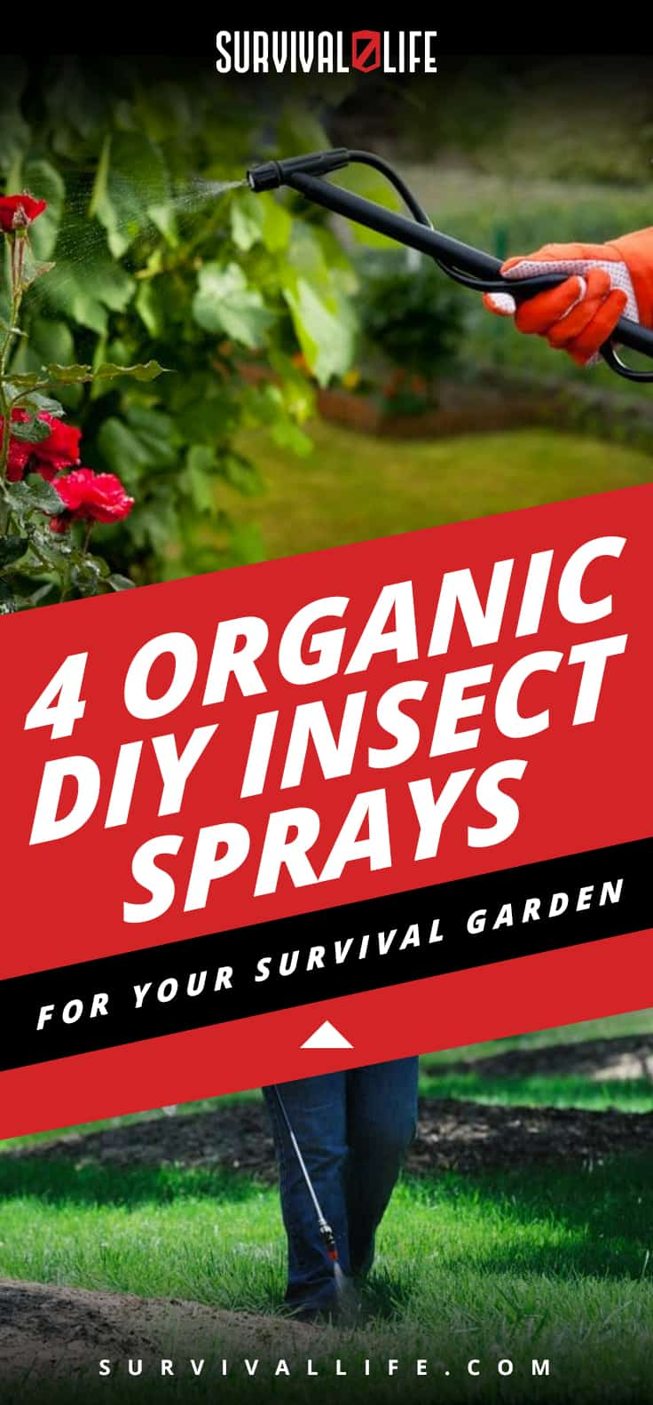 4 Organic DIY Insect Sprays For Your Survival Garden