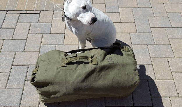 A USGI Sea Bag: The Ideal Vehicle Go Bag For You bear bag