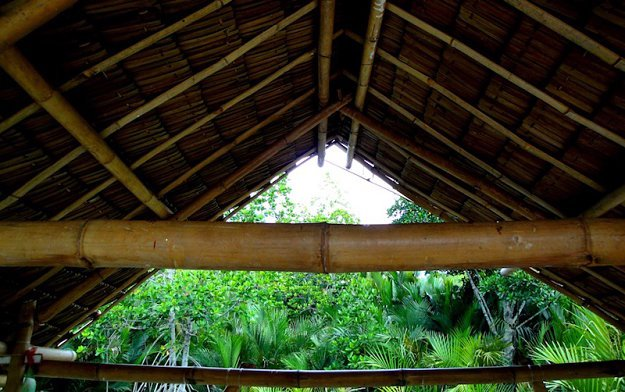 Construct the roof | How To Build A Bamboo House In The Wild | Survival Life Shelter