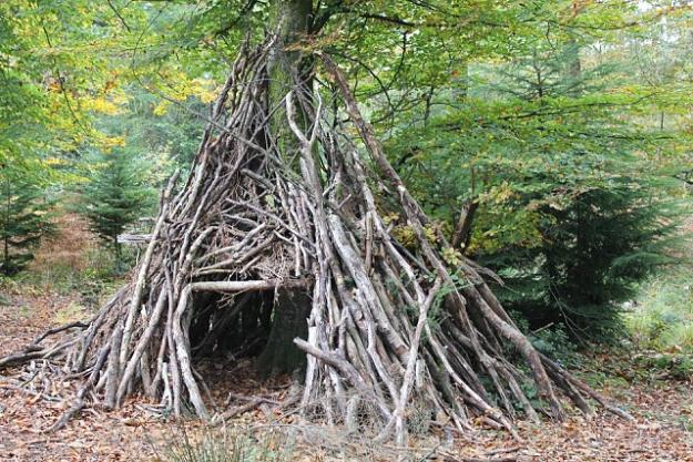 Teepee Survival Shelter | Create Survival Shelters Using Tree Branches | Survival Life
