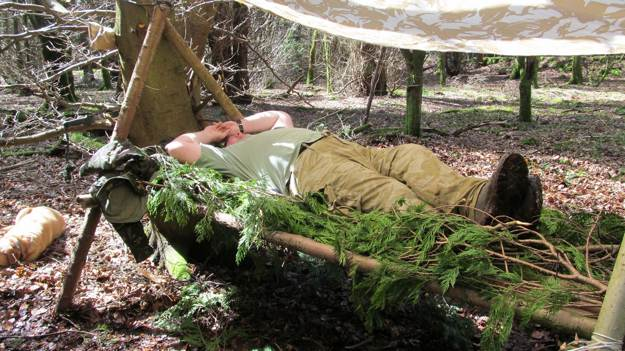 Nest Making   Jungle Survival   Create A Shelter In The Jungle