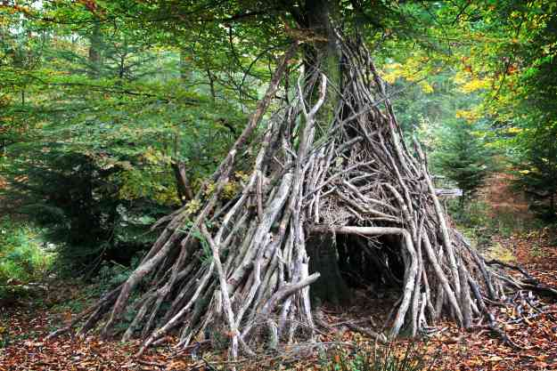 Teepee Survival Shelter | Survival Shelters You Can Quickly Craft From Tree Branches