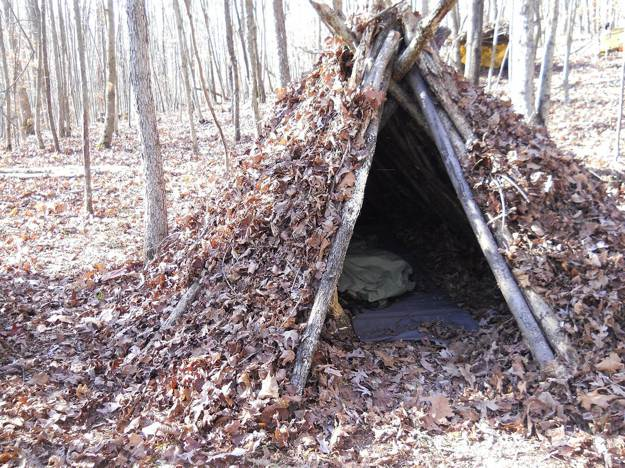 Covering Materials | How to Build A Spider Shelter | A Survival Life Guide