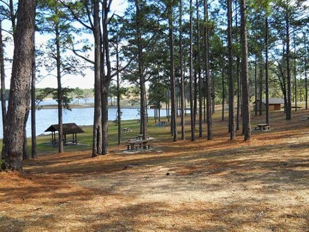 Camping in Mississippi | Ultimate List of Campgrounds Around US | Survival Life Camping Spots List