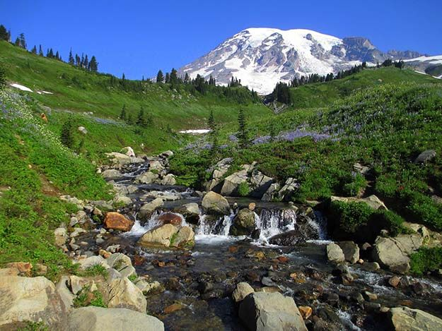 Camping in Washington | Ultimate List of Campgrounds Around US | Survival Life Camping Spots List