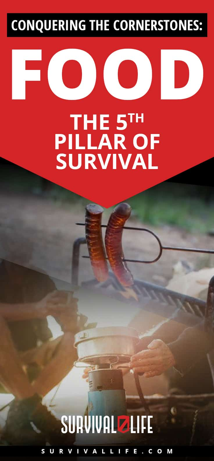 Check out Conquering the Cornerstones: Food - the 5th Pillar of Survival at https://survivallife.com/food-pillar-survival/