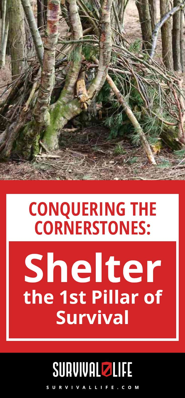 Shelter   Conquering the Cornerstones: Shelter - the 1st Pillar of Survival