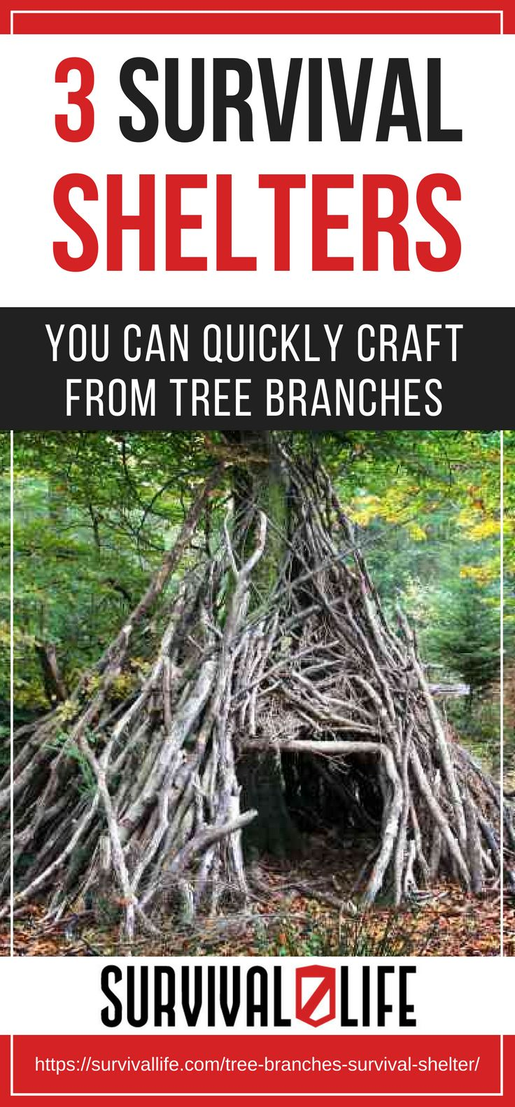 Placard | 3 Survival Shelters You Can Quickly Craft From Tree Branches