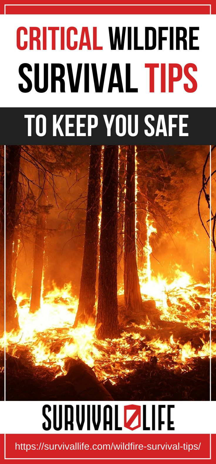 Placard | Critical Wildfire Survival Tips To Keep You Safe [2018 Updated]