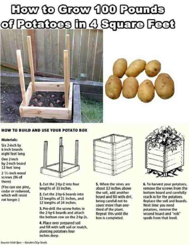 small garden potato plant box instructions | Grow 100 Pounds Of Potatoes In A DIY Square Garden Design | Grow 100 Pounds of Potatoes | how to grow potatoes in a box