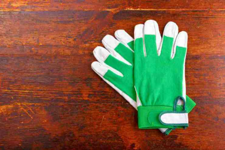Green and white Gloves | Building Evacuation Kit: High-Rise Survival Tips