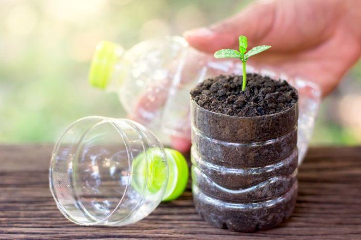 planting-seedlings-plastic-bottles-placed-on | DIY Greenhouse