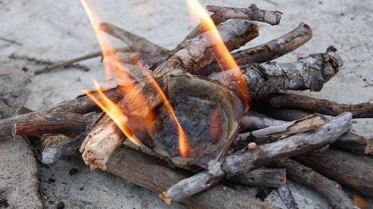 firestarter-made-out-of-egg-cartons | start a fire