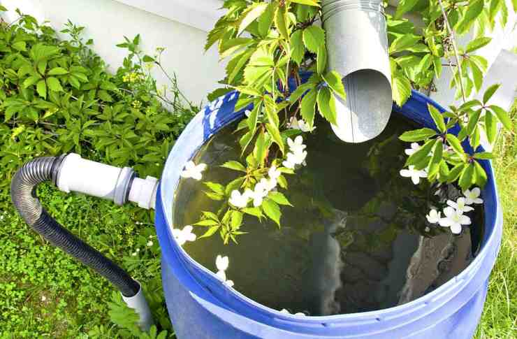 Drain for rain water in a plastic barrel in a country house | Ways To Get Clean Drinking Water In An Emergency