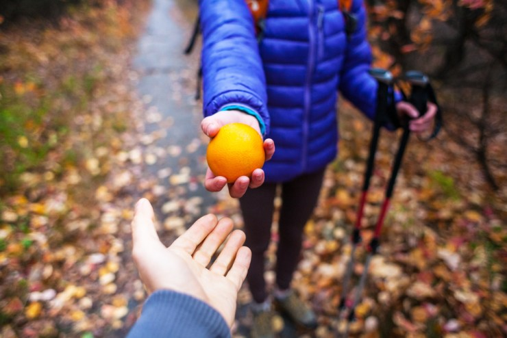 Consume Fruits | Tips on How to Stay Hydrated in the Wild