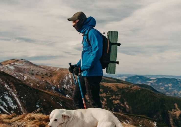 Anonymous male hiker standing on mountain peak with purebred dog | Tips to Help You Camp in the Rain