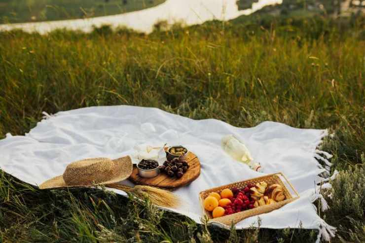 Beautiful summer picnic on a green hill with cotton blanket, straw hat, fresh white wine and some apricots and berry-healthy camping meals