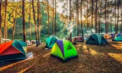 Camping and tent under the pine forest in sunset at north of Thailand | How To Choose A Tent | featured