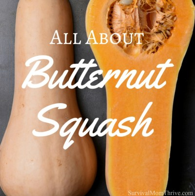 All About Butternut Squash & 12 Golden Delicious Recipes to Use it in via Survival Mom Thrive