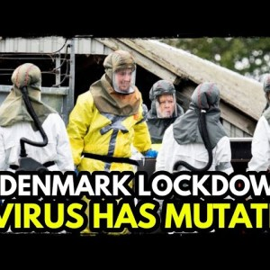 Mutated Virus Infecting Humans: Millions of Mink Culled/ Lockdown