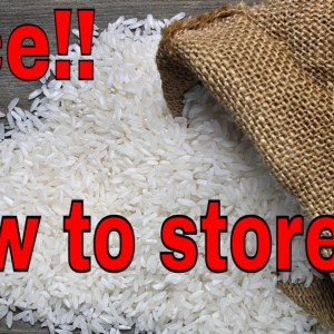 #Shorts RICE: How to store your rice in less than a minute?  Priceless information!