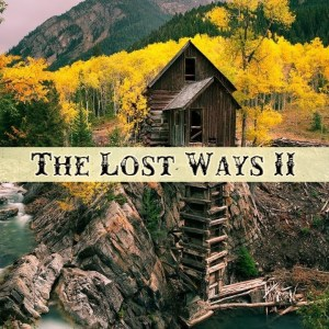 The Lost Ways 2 Survival Book – By Claude Davis - The Lost Ways Saving Our Forefathers Skills