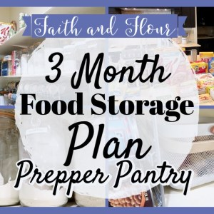 Preparing for a 3 Month Food Supply | Prepper Pantry 2021 | Building an Extended Pantry