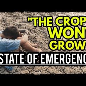 Prepare For Food Riots: Widespread Crop Failure