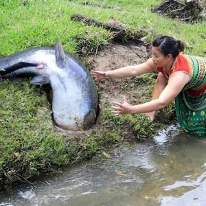 Survival Skills - Finding Fish Meet Catfish And Catch Unique Fish