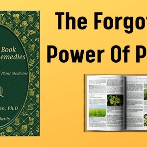 The Lost Book of Herbal Remedies by Dr. Nicole Apelian / The Forgotten Power of Plants