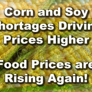 Mega Drought Affects Food Supply Corn and Soybean Shortages