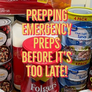 2109 Supply Chain Break Down~ Food shortages ~ Prepping Emergency Preps Before It's too Late!