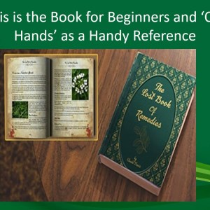 Lost Book of Remedies