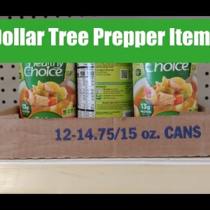 Prepping on a Budget | Prepping 2021 | Dollar Tree Prepping | Prepper Canned Meats | Food Shortages