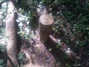 Standing Log