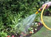 Green-Up Your Backyard Greener Means Cleaner