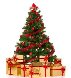 Christmas Gifts Suggestions