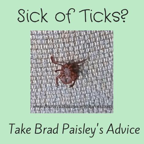 Sick of ticks take brad paisley s advice art of survival