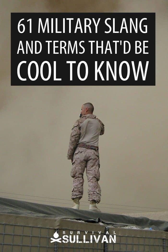 Army Sayings : sayings, Military, Slang, Terms, That'd, Survival, Sullivan