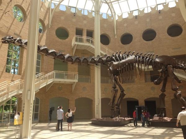 Atlanta Fernbank Museum of Natural History