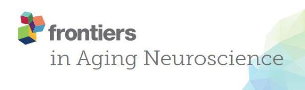 Understanding Cognitive Aging