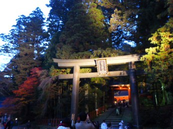Torii to the World Heritage shrines.
