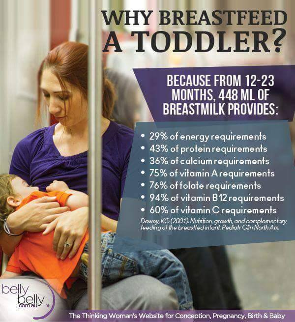The Benefits of Breastfeeding a Toddler
