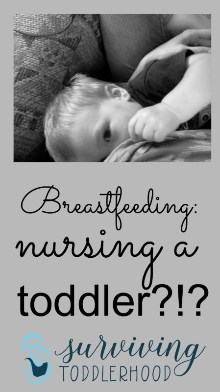Breastfeeding a toddler? Will my toddler remember nursing? What will people think?