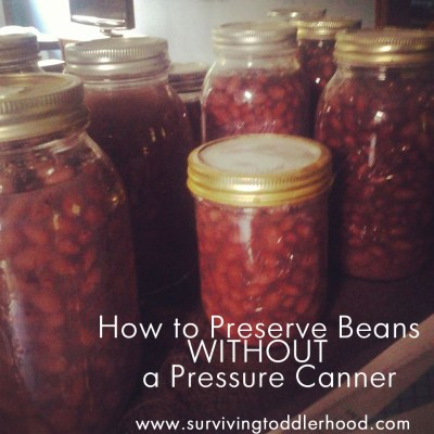 How to Preserve Beans WITHOUT a Pressure Canner