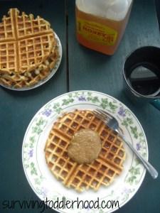 Grain Free Coconut Flour Waffles
