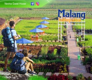 Nevina Guest House Malang 2019